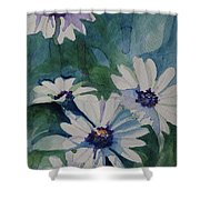 Daisies In The Blue Shower Curtain