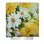 Daisies In The Sky Shower Curtain