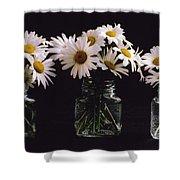 Daisies On Black Shower Curtain