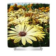Daisies Yellow Daisy Flowers Garden Art Prints Baslee Troutman Shower Curtain
