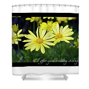 Daisy A Day Shower Curtain