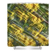 Daisy Abstract Shower Curtain
