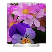 Daisy And Pansy Shower Curtain