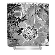 Daisy Bouquet In Black And White Shower Curtain