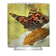 Daisy Delight Shower Curtain