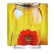 Daisy In Glass Jar Shower Curtain