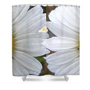 Daisy  Magic Shower Curtain