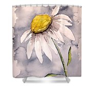 Daisy Modern Poster Print Fine Art Shower Curtain