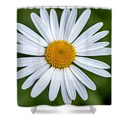 Daisy Shower Curtain