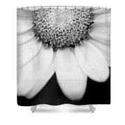 Daisy Smile - Black And White Shower Curtain