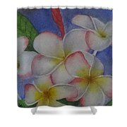 Daisy Wilcox Shower Curtain