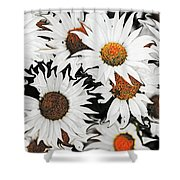 Daisy With A Twist Shower Curtain