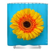 Daisy - Yellow - Orange On Light Blue Shower Curtain