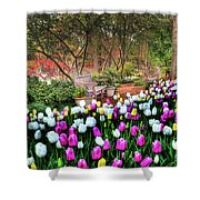 Dallas Arboretum Shower Curtain by Tamyra Ayles