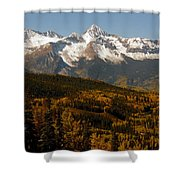 Dallas Divide Shower Curtain
