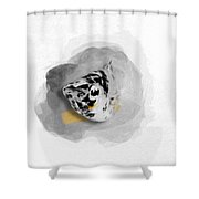 Dalmatian Molly No 01 Shower Curtain