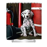 Dalmatian Puppy With Fireman's Helmet  Shower Curtain by Garry Gay