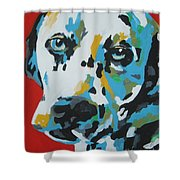 Dalmation Shower Curtain