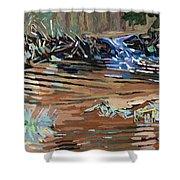Dam Beavers Shower Curtain by Phil Chadwick