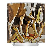 Damascus Road Shower Curtain