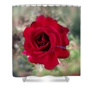 Dame En Rouge Shower Curtain