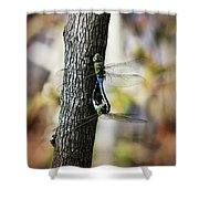 Dragonflies Need Love Too Shower Curtain