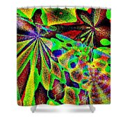 Damselwing Shower Curtain