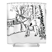 Dan And Horse 11 Shower Curtain
