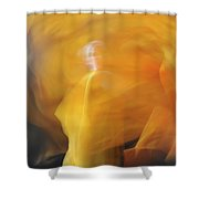 Dance Of Fire Shower Curtain
