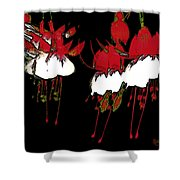 Dance Ballerinas Dance Shower Curtain