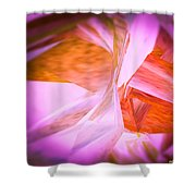 Dance Of The Peony  Shower Curtain