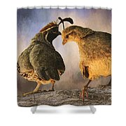 Dance Of The Quail Shower Curtain