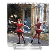 Dance Of The Swiss Guard Shower Curtain