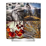 Dance Of The Trees Shower Curtain