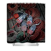 Dances With Lobsters Shower Curtain