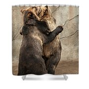 Dancing Bears Shower Curtain