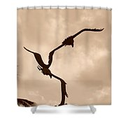 Dancing Birds Shower Curtain