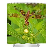 Dancing Dragonfly Shower Curtain