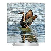 Dancing Duck Shower Curtain