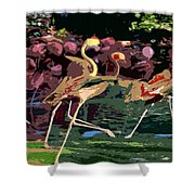 Dancing Flamingos  Shower Curtain