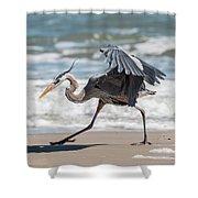 Dancing Heron #1/3 Shower Curtain