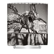 Dancing Horses Noir Shower Curtain
