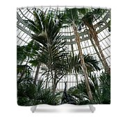 Dancing In The Jungle Shower Curtain