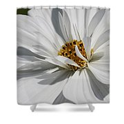 Dancing In The Summner Breeze Shower Curtain