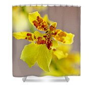 Dancing Lady Orchid Shower Curtain