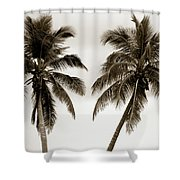 Dancing Palms Shower Curtain