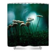 Dancing Parasol Mushrooms Shower Curtain