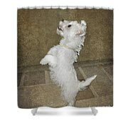 Dancing Puppy Shower Curtain