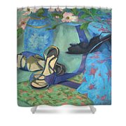 Dancing Shoes And Dogwoods Shower Curtain