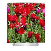 Dancing Tulips Shower Curtain